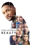 Collateral Beauty wiki, synopsis