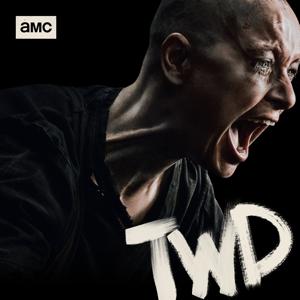 The Walking Dead, Season 10