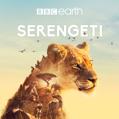 Serengeti HD Download