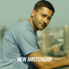 New Amsterdam - What the Heart Wants  artwork