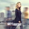 Grey's Anatomy - It's Raining Men  artwork