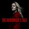 The Handmaid's Tale - Under His Eye  artwork
