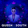 Queen of the South - Un Asunto De Familia  artwork