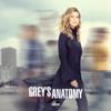 Help Me Through the Night - Grey's Anatomy