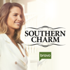Southern Charm - White Gloves Off  artwork