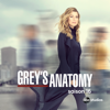 Grey's Anatomy - Une pilule difficile à avale  artwork