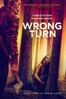 Mike P. Nelson - Wrong Turn (2021)  artwork
