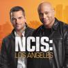 NCIS: Los Angeles - Vivre et mourir au Mexique  artwork