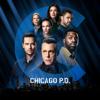 Chicago PD - In the Dark  artwork