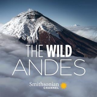 Wild Alaska on iTunes
