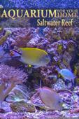 Aquarium for Your Home: Salt Water Reef