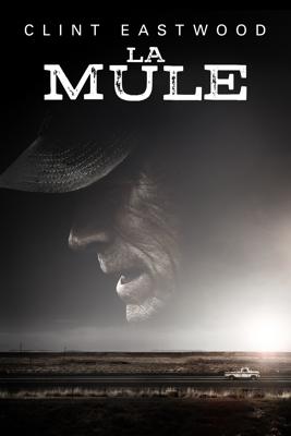 Clint Eastwood - La Mule illustration