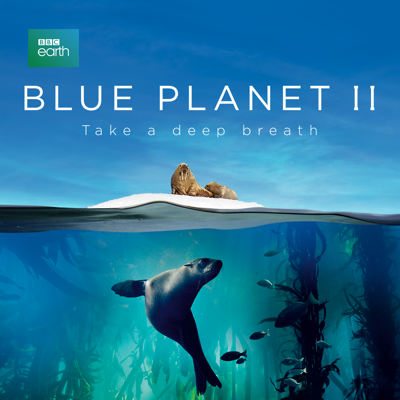 Blue Planet II HD Download