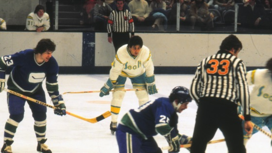 cbc2eeba98c The California Golden Seals Story on iTunes