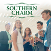 Southern Charm - Gone Girl  artwork