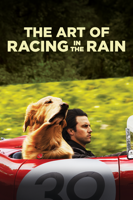 Simon Curtis - The Art of Racing In the Rain artwork