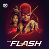 The Flash - Success Is Assured  artwork