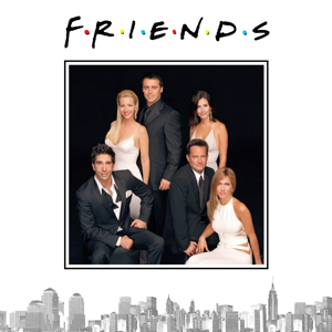 Friends, Season 10 Synopsis, Reviews