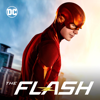 Crisis on Infinite Earths, Pt. 3 - The Flash