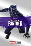 Black Panther  wiki, synopsis