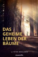 Jörg Adolph - Das geheime Leben der Bäume artwork