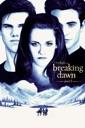 Affiche du film Twilight : Chapitre 5 - Révélation - 2ème partie