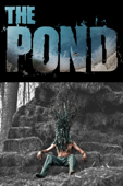 The Pond cover