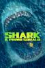 Shark - Il Primo Squalo - Jon Turteltaub