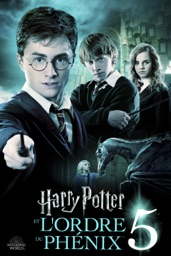 Screenshot Harry Potter et l'Ordre du Phénix