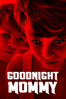 Severin Fiala & Veronika Franz - Goodnight Mommy  artwork