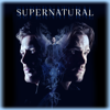 Supernatural - Stranger in a Strange Land  artwork