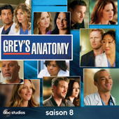 Grey's Anatomy, Saison 8