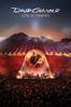 David Gilmour: Live At Pompeii - David Gilmour