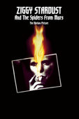 Ziggy Stardust and the Spiders from Mars - The Motion Picture