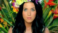 Katy Perry - Roar artwork