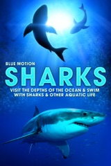 Sharks: Visit the Depths of the Ocean & Swim with Sharks & Other Aquatic Life
