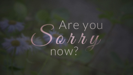 Are You Sorry Now - Mary Zilba