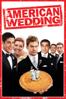 American Wedding - Jesse Dylan