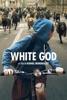 icone application White God