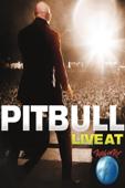 Pitbull: Live at Rock in Rio