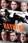 Haywire wiki, synopsis