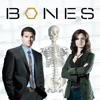 Bones, Season 1 - Synopsis and Reviews