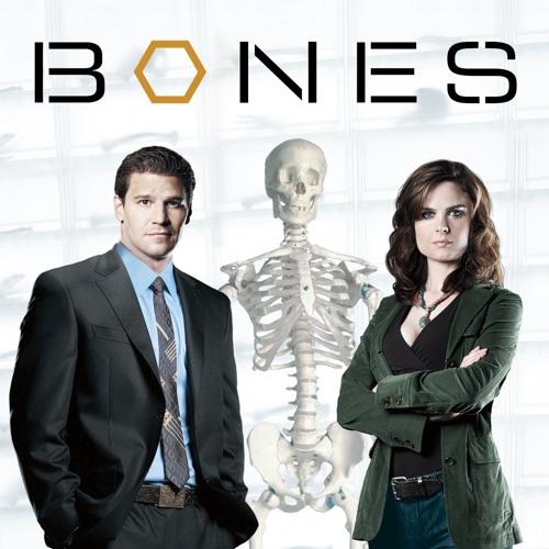Bones, Season 1 image