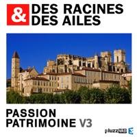 Télécharger Des Racines & des Ailes, Passion patrimoine, Vol. 3 Episode 3