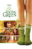 The Odd Life of Timothy Green - Peter Hedges