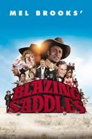 Blazing Saddles (iTunes)