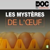 Télécharger Les mystères de l'œuf Episode 1