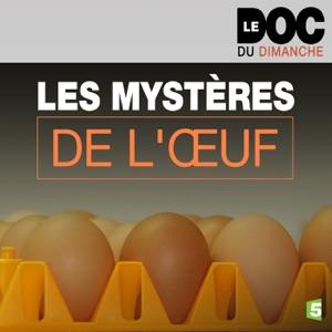 Les mystères de l'œuf - Episode 1