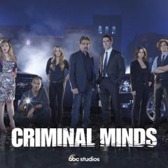 Criminal Minds, Season 11 (Subtitled)