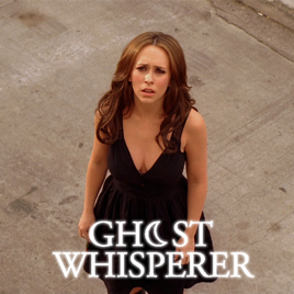 who played ned on the ghost whisperer